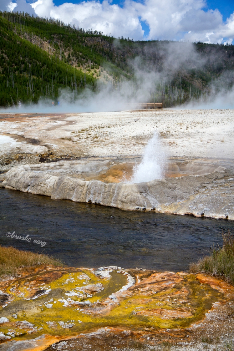 stream and geyser